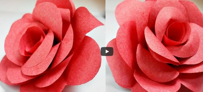 Origami flower rose how to do it